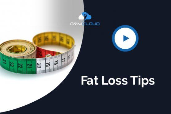 Keys to Success With Your Fat Loss Program